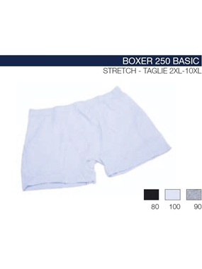 Picture of Boxer 250  Maxfort stretch